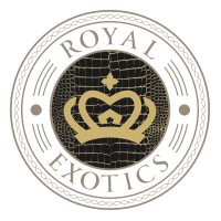 Сайт «Royal Exotics»
